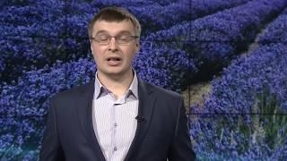Крымская промышленность как часть общероссийской(, 2016-10-22T12:59:10.000Z)