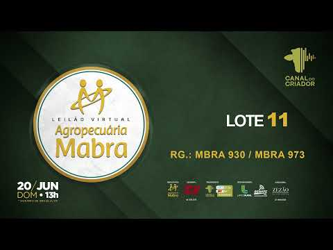 LOTE 11 930 973