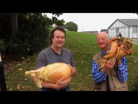 Worlds Largest Onion and Carrot unveiled in UK