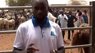SOS SAHEL - Marché Manni - Burkina Faso