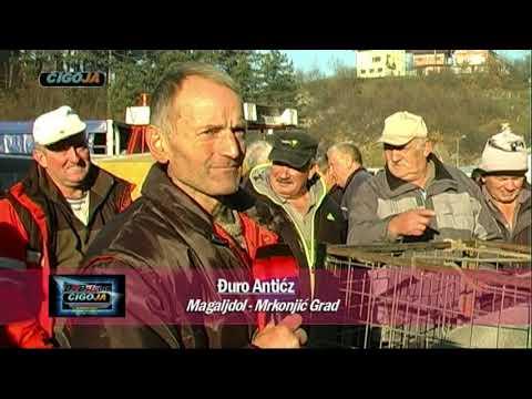 VASAR MRKONJIC GRAD 2017 ARANDJELOVDAN TRADICIJA