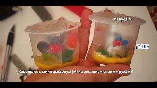 Как сделать мини аквариум  Мини аквариум своими руками!