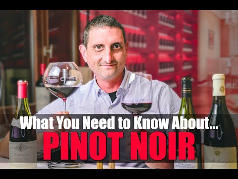 wine article Everything You Need To Know About Pinot Noir