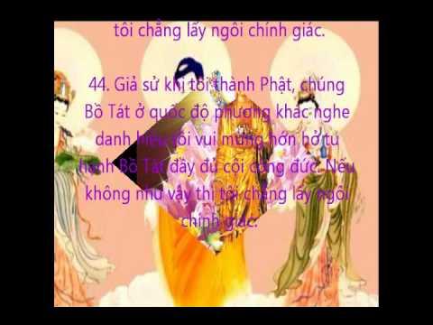Niệm Phật A Di Đà- Đ.Đ. Tâm Đạo và Đ.Đ Chúc Thiện.wmv