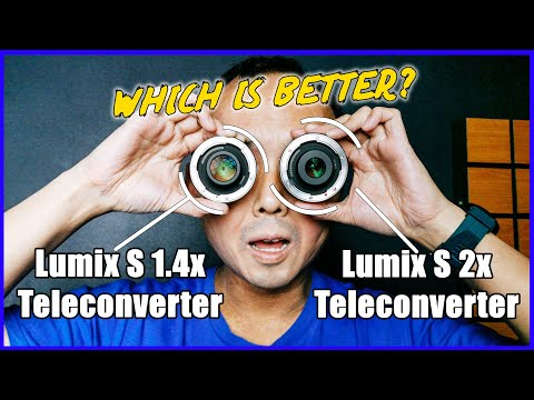 Panasonic Lumix S 1.4x And 2x Teleconverter In-Depth Review