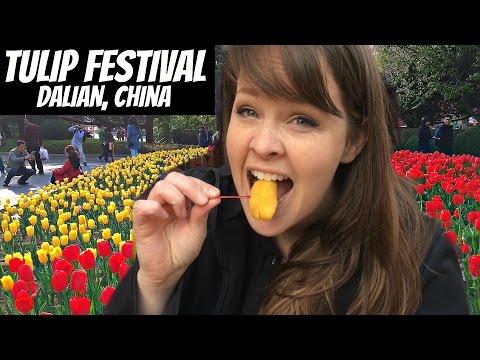 Tulip Festival | Dalian, China | Labor Park Series | Wheelee's Travels