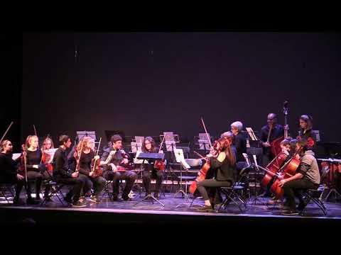 L'Orquestra Simfònica de l'Escola de Música d'Igualada protagonitza la sessió d'AUGA