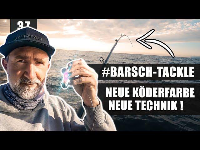 Dorsch-Alarm mit neuer BALLER-FARBE! (Mit Gewinnspiel)
