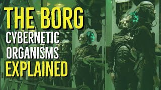 The BORG (STAR TREK Cybernetic Organisms Explained)
