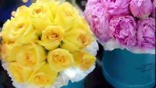 видео Розы хамелеоны