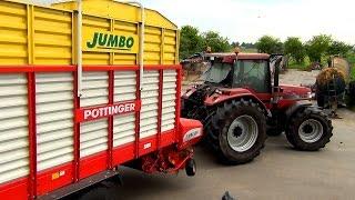 gras inkuilen 2015 met case ih magnum 7240 pro pttinger jumbo magnum 7110 en ford 4000