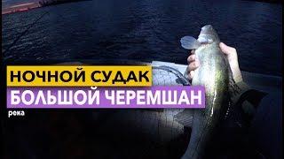 ЛОВЛЯ СУДАКА НОЧЬЮ Рыбалка на реке Большои Черемшан Димитровград