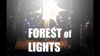 FOREST OF LIGHTS by Art & Technology, AAU. the Culture Meeting 2015