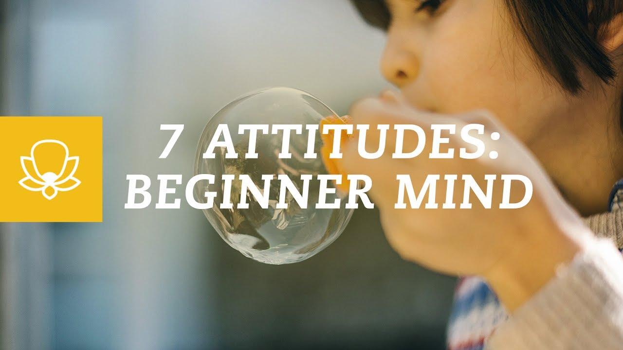 7 Attitudes of Mindfulness Part 4: Beginner's Mind - YouTube