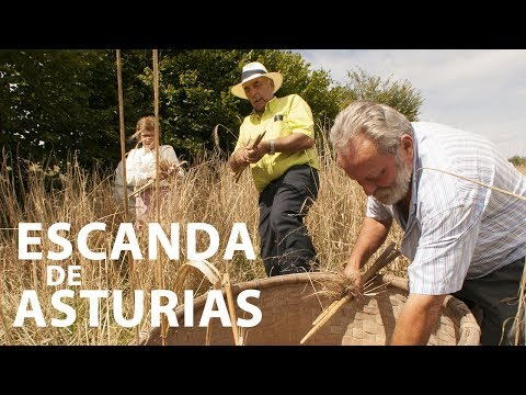 video about Escanda de Asturias