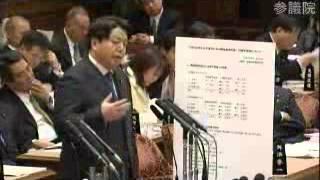 100126 林芳正 参議院予算委員会