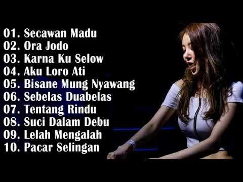 Download Dj nofin asia full album bikin geleng geleng kepala