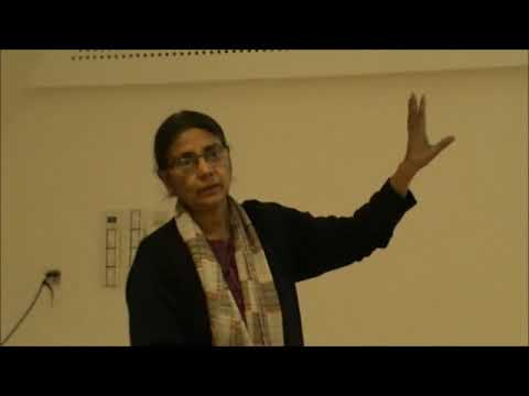 Lecture of Prof. Geetam Tiwari, Vienna, 22 March 2018