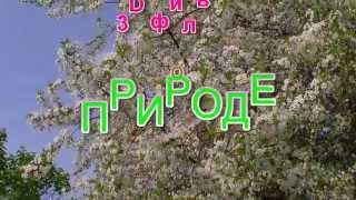 Заставка Трейлер канала Советы Кирилла о природе и другом