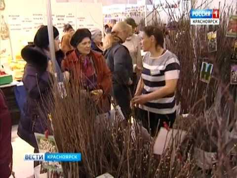 ОРТВ: Питомник для деревьев в Красноярске - YouTube