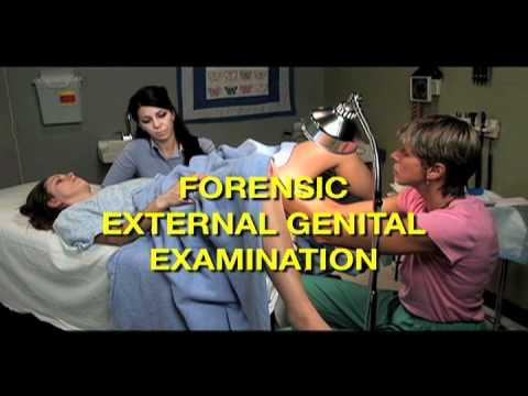 Procedures and Techniques thumbnail