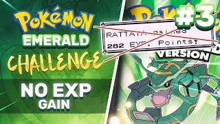 No EXP Challenge   Pokemon Emerald part 3