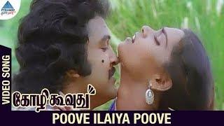 Kozhi Koovuthu Tamil Movie Songs   Poove Ilaiya Poove Video Song   Prabhu   Silk   Ilayaraja