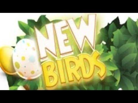 New Birds Экономическая игра с выводом реальных денег.Без баллов и кешпоинтов.
