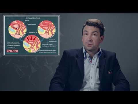 Бактериальный цистит у женщин. мужчин, детей: лечение