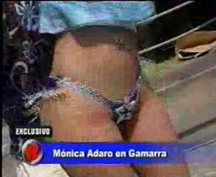 Monica adaro
