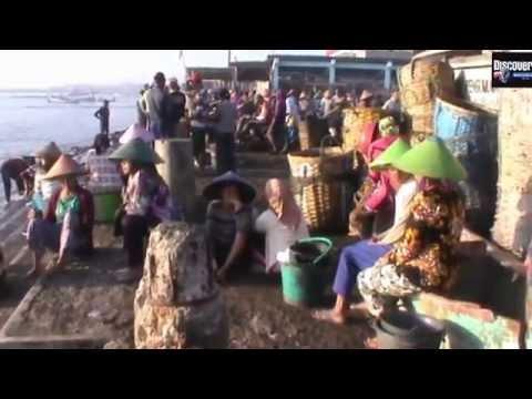 Kesibukan Nelayan Muncar Banyuwangi, di Pasar ikan terbesar di pesisir Jawa Timur