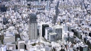 2011年夏の電力危機を越えて?東京都の気候変動対策と事業所の挑戦?(3)