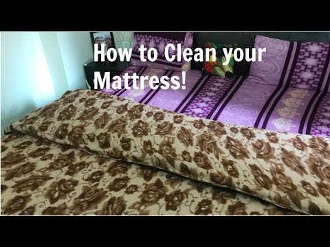 How to Clean Mattress | How to clean and Care for your Bed Mattress | Organizopedia