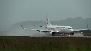 台風21号接近 JAL B738 JL433 水煙着陸 松山空港 20171022 thumbnail