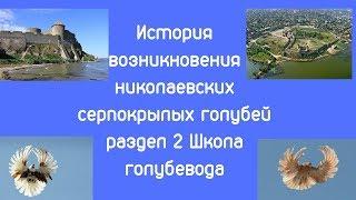 История возникновения николаевских серпокрылых голубей раздел 2 Школа голубевода