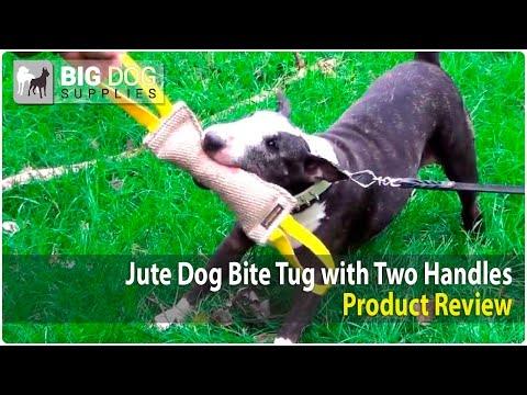Bull Terrier, Pit Bull and Tervuren Playing with Durable Jute Bite Tug