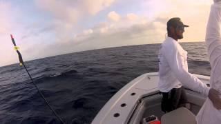 2013 World Sailfish Championship Winner Team Blue Time