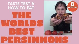 How to Eat the World's Best Rare Persimmon Fruits | Taste Test