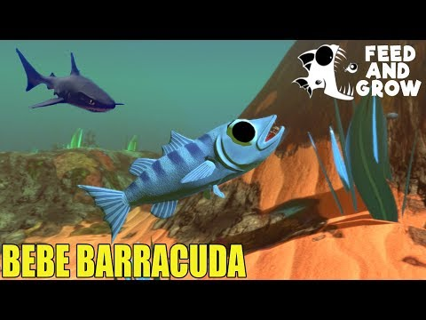 Feed and Grow: Fish - LA BARRACUDA DEVORA TIBURONES - GAMEPLAY ESPAÑOL #47