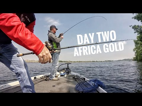 This is Getting SERIOUS! Fishing for Africa Gold Day 2