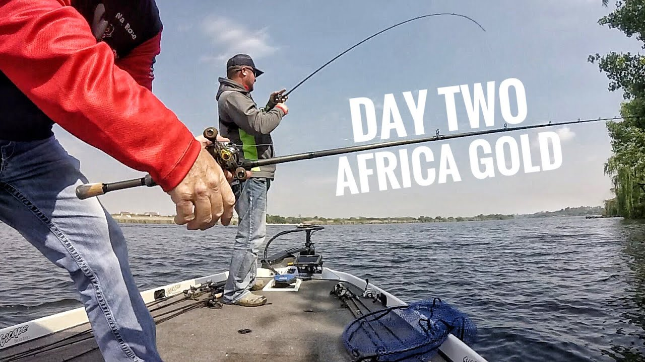 this-is-getting-serious-fishing-for-africa-gold-day-2