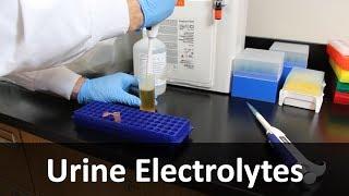 Urine Electrolyte Measurement