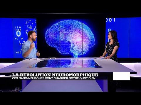 Tech 24 - Nano-neurones, maxi effets !