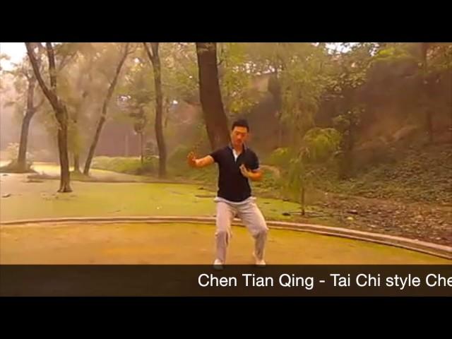 Chen Tian Qing  - Tai Chi style Chen Xiaojia Yilu Chenjiagou [陈氏太极拳小架 Taijiquan style Chen]