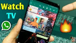 How To Watch Live Tv Shows On WhatsApp 2019 🔥 | New WhatsApp Trick 2019