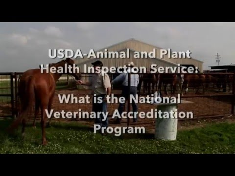 APHIS National Veterinary Accreditation Program (NVAP)