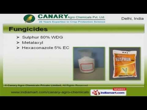 Crop Protection Chemicals  by Canary Agro Chemicals Private Limited, Delhi
