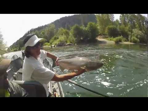 Fall Kings On The Rogue | Southern Oregon Fishing