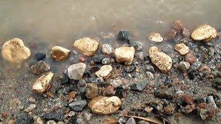 Как найти самородки золота? Богатое месторождение возле нас!