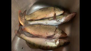 С берега на Ахтубе в декабре Отчет о рыбалке 19 12 19